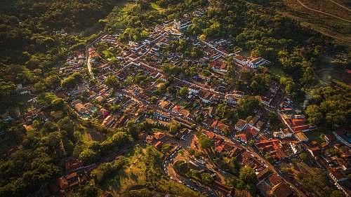 nature bird's-eye photography of city near trees outdoors