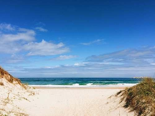 ocean seashore and body of water water