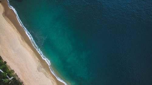 beach aerial view of beach and trees sea