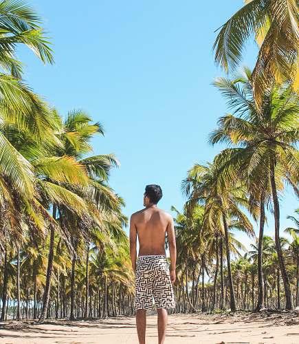 people man standing on empty road in between coconut trees human