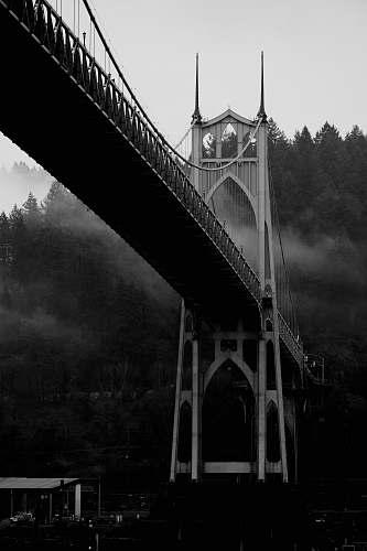 building grayscale photo of bridge in forest bridge