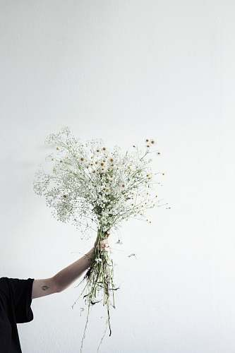 flora person holding flowers ikebana