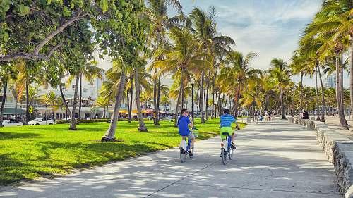 bicycle boy riding gray bikes bike