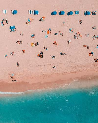 beach bird's-eye view photography of people in seashore coast