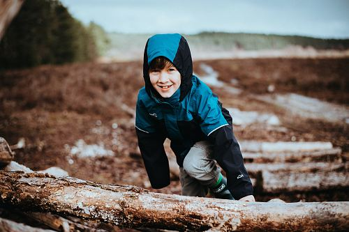 photo boy climbing on tree stump free for commercial use images