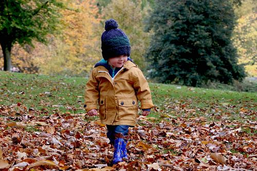 photo boy wearing orange bubble jacket walking on dry fallen leaves on ground free for commercial use images