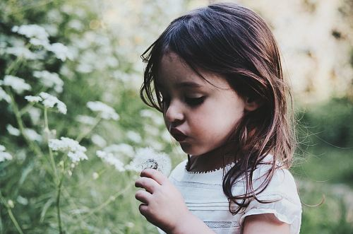 girl holding white flower during daytime