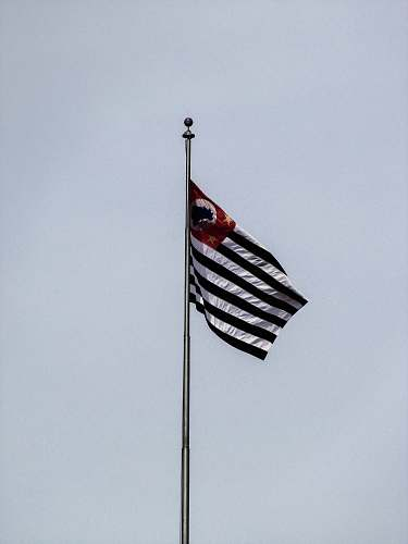 flag black and white striped flag emblem