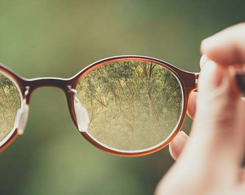 glasses person holding brown eyeglasses with green trees background state of são paulo