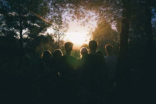 cubelles several people watching the sunrise in the middle of forest spain