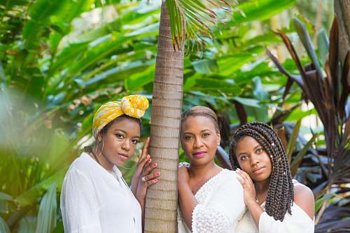 human three women standing beside tree person