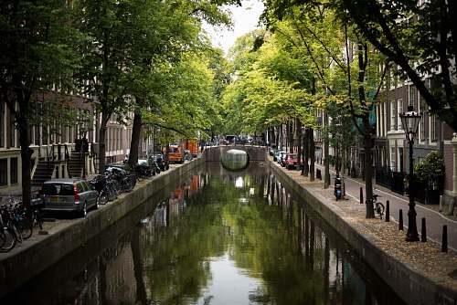 canal view of concrete bridge surrounded by trees water