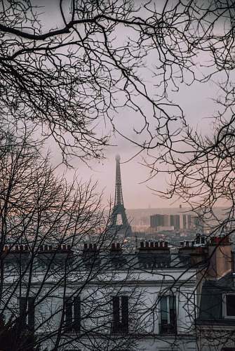 france Eiffel Tower, Paris photo grey