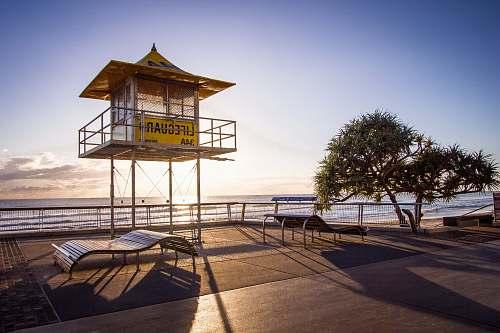 tree empty lifeguard house surfers paradise