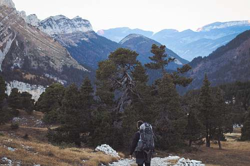 outdoors man carrying backpack standing near trees and mountain mountain
