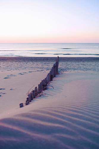 water brown wooden fence on seashore at daytime nature