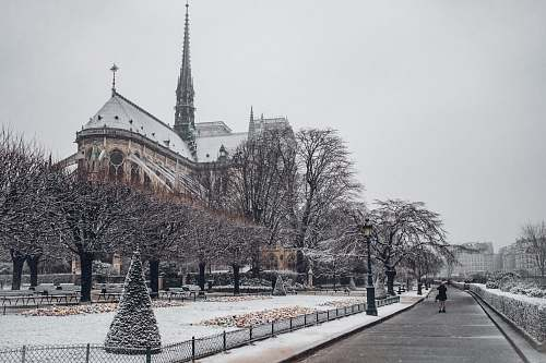 france Gothic cathedral during winter grey
