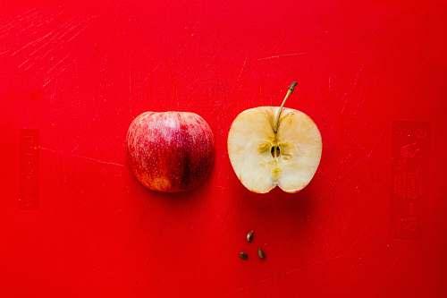 apple sliced apple plant