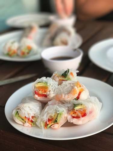 meal spring rolls on plate dish