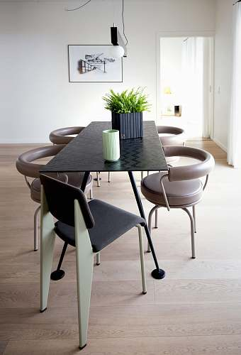 table leaf plant on dining table dining table