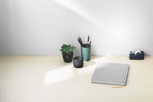 table pen in case beside succulent plant tabletop