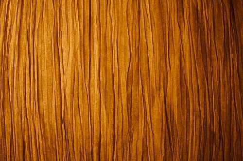 texture  wood stump