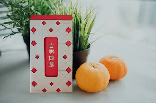 plant orange fruit on white and red checkered table citrus fruit