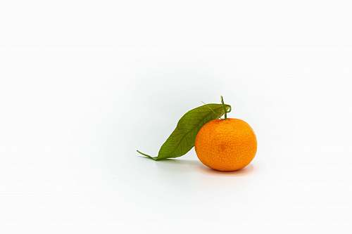 plant orange tangerine fruit citrus fruit