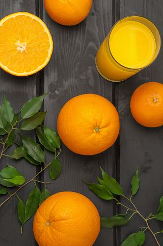 photo plant orange citrus fruits with juice produce free for commercial use images