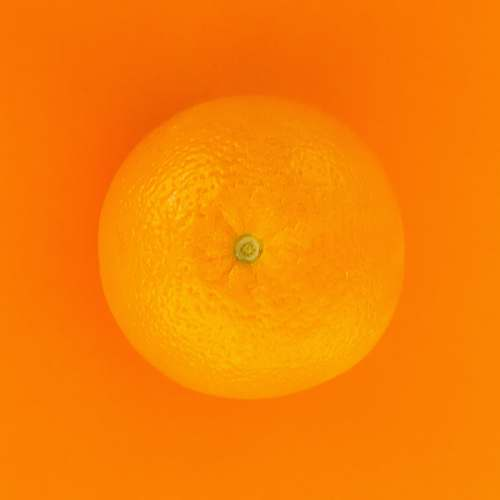 fruit orange fruit with orange background citrus fruit