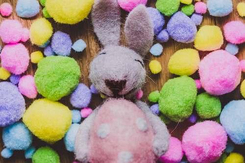 ball gray rabbit plus toy sphere