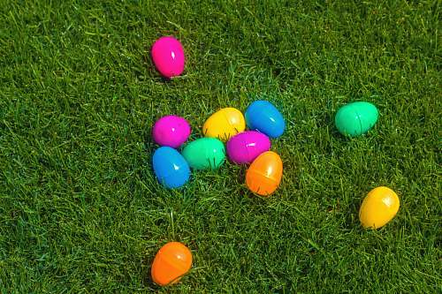 grass assorted plastic egg containers easter egg