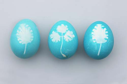 food three teal-and-white painted eggs easter egg