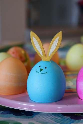 egg easter egg on rack easter egg