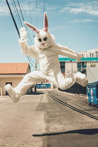 nv man in bunny costume in mid air in time lapse photography usa