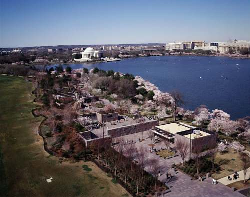 outdoors Aerial view of Washington, D.C. at Cherry Blossom Festival time landscape