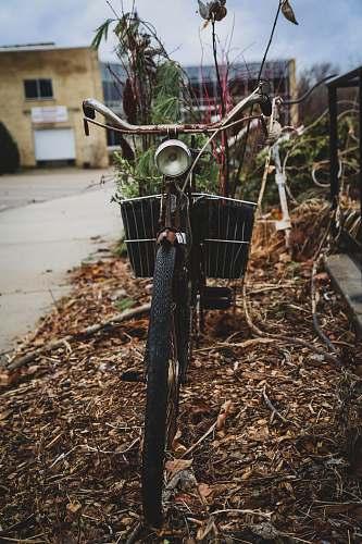 vehicle black cruiser bike parking near road bike