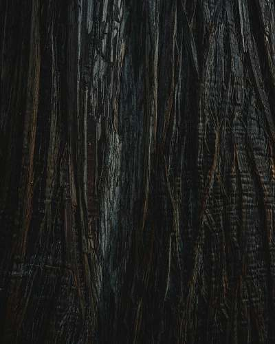 hardwood black and gray textile black-and-white