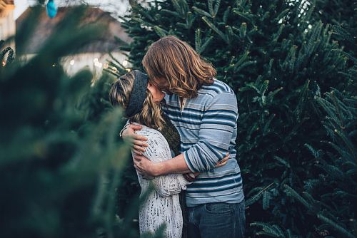 photo man kissing woman near pine tree free for commercial use images