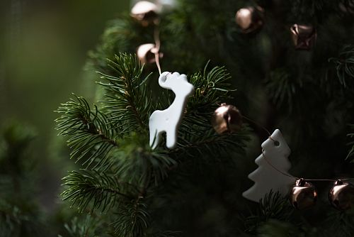 photo white deer Christmas tree decoration free for commercial use images