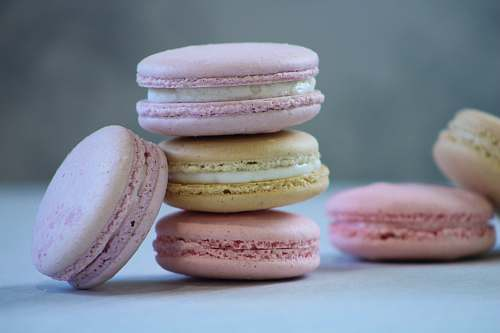 confectionery baked macaroons sweets