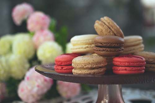confectionery selective focus photography of macaroons sweets