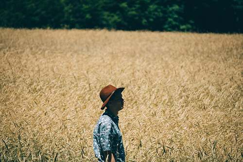 human man standing at wheat field people