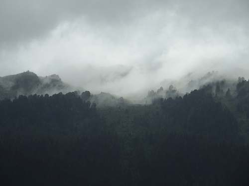 nature silhouette of mountain covered by fogs grey