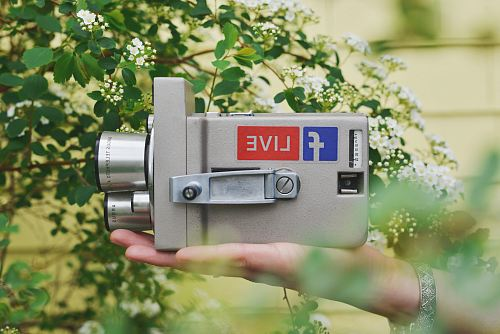 photo person holding gray video camera near green leaf plant during daytime free for commercial use images