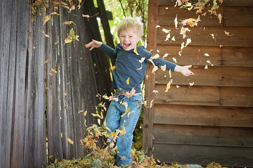 photo photo of boy near fence with falling leaves free for commercial use images
