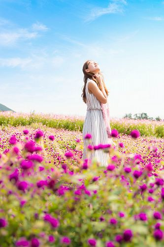photo woman wearing white and gray striped sleeveless dress smelling the air standing in the pink flower field at daytime free for commercial use images