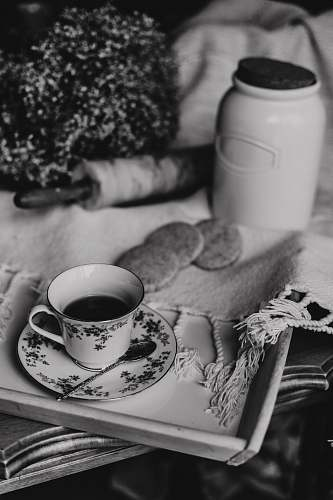 knot grayscale photography of teacup on a tray near cookies and jar grey
