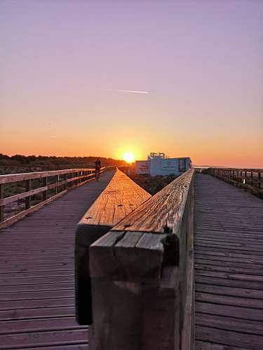 bridge brown wooden pathway during sunrise boardwalk