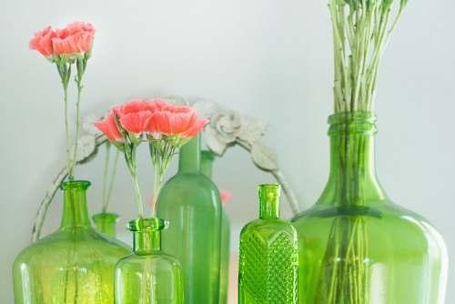 bottle green grass bottles with pink flowers beside white wall flora